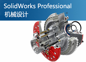 SolidWorks Professional 专业版